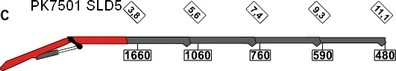 GRUE AR CABINE PALFINGER PK 7501 SLD5C